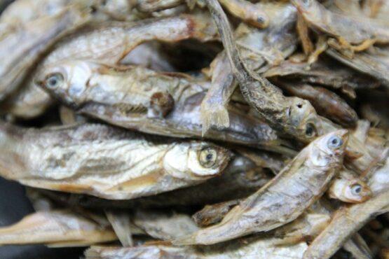 Omena Fisch-Kauartikel