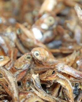 Sprotten Fisch Kauartikel
